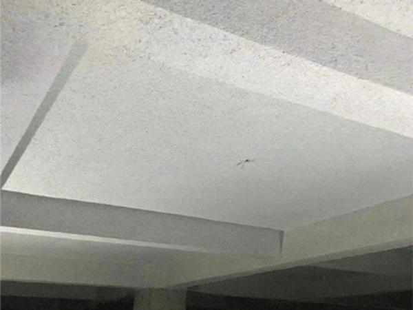 厂房无机纤维喷涂